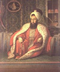 .sultan_mahmud_turkey_s.jpg